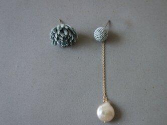 ohana & coin pearl:4の画像
