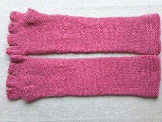 ピンク一色のロング指なし手袋の画像