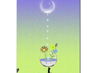 「て、てつだってえ~・・・」 ほっこり癒しのイラストポストカード2枚組No.636の画像