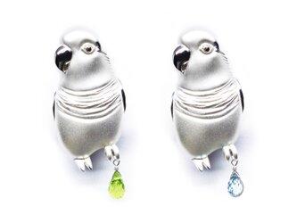 2WAYオキナインコブローチ・ペンダントトップ【Pio by Parakee】Monk parrotの画像