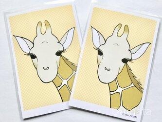 きりんのイラストのポストカード/同柄2枚組の画像