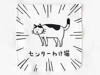 センターわけ猫 ポケット付Tシャツの画像