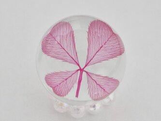 四つ葉ドロップ L (ピンク)の画像