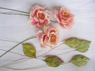 素材用 シルクの小バラと葉っぱの画像
