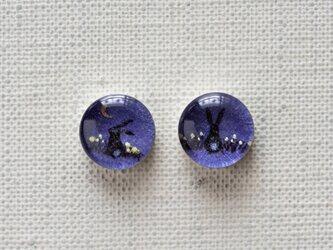 まるい耳飾り38/青い夜のうさぎの画像