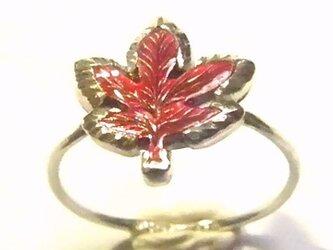 紅葉の緋色銅 シルバーリングの画像