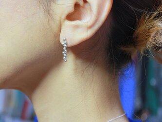 Sea Grape / Earrings(ピアス)の画像
