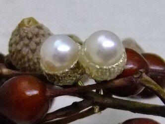 真珠のドングリ*925/K18gp 14kgfピアスの画像