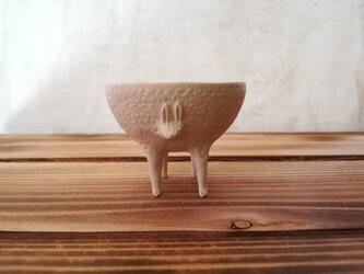 四肢生物杯12の画像