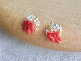 珊瑚とパール・イヤリングの画像