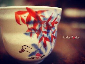 フリーカップ南天家鴨の画像