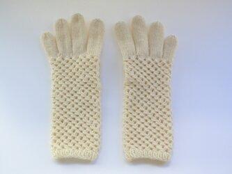 netting gloves(生成)の画像