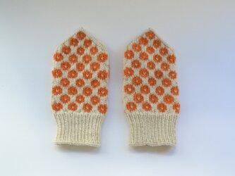 drops(オレンジ)の画像