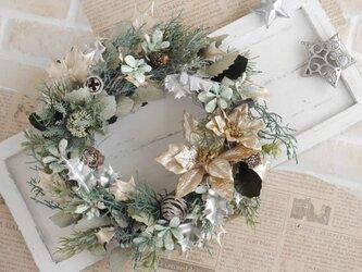 ポインセチアのクリスマスリース アッシュグリーンの画像