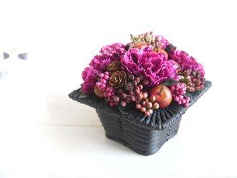 arrangement-vioの画像