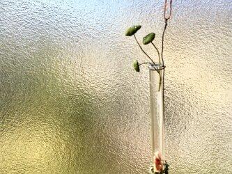 2391.bud 粘土のウォーターマッシュルーム 試験管の画像