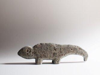 再出品カメレオン4(カメレオン3)  chameleon4 (chameleon3)の画像