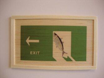 Fish exit signの画像