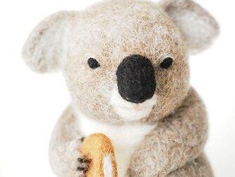 コアラ with Donutの画像