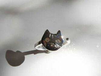 sv925 仔猫のリングの画像