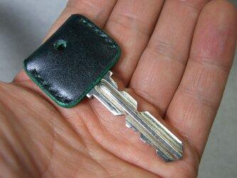 ルガトーグリーンのキーカバー の画像