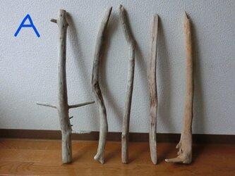 drift wood素材(55~65cm 5・6本セット)インテリアなどに人気です!の画像