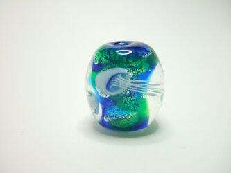 Thetis  海月玉の画像