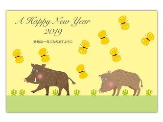 セブンオレンジ 2019亥年賀状《ちょうちょとお散歩》(写真用(光沢)年賀葉書印刷タイプ)の画像