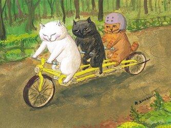 カマノレイコ オリジナル猫ポストカード「高原サイクリング」2枚セットの画像