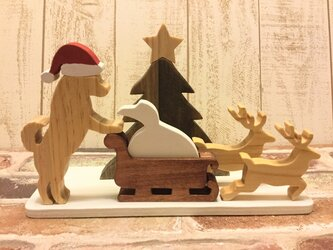 クリスマス☆柴犬が遊ぶクリスマス飾り☆Christmas☆Xmasの画像
