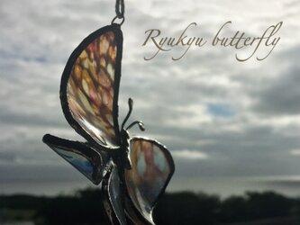 琉球ガラスbutterflyの画像