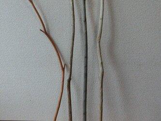 drift wood素材(75~90cm 4本セット)インテリアなどに人気です!の画像