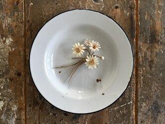 丸い蕾のマーガレット。。。suMire-bouquet 布花コサージュの画像