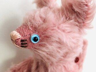シャトン・フランボワーズ 子猫のぬいぐるみ ギフト 誕生日 バースデーギフトの画像