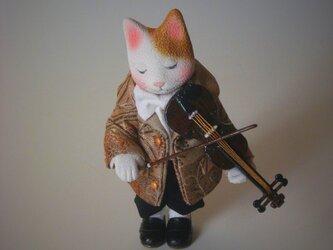 縮緬福猫 ビオラ その二の画像