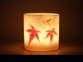 赤紅葉のランタンキャンドル(L)の画像