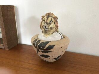 カノプス壺 ライオンの画像