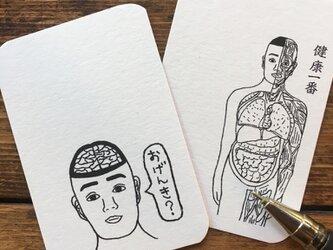 ぬり絵もできる!人体模型マナブくんメッセージカード12種類入りの画像