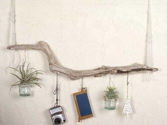 流木の小物掛け、流木アクセサリーハンガー32の画像