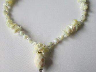 白いシェルのネックレス   の画像