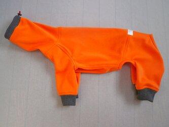 犬服 I様オーダーメイド品コーイケルホンディエ用フルスーツの画像