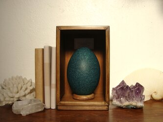 エミューの卵標本(色明るめ)。の画像