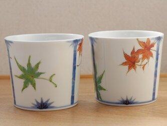 紅葉cupの画像