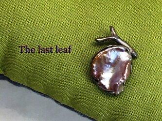 The last leaf(最後の一葉)の画像