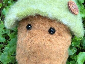 羊毛フェルト 森の住人 常盤樹の画像