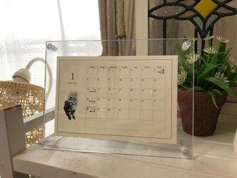 2019年版 MOONカレンダー(リフィル)の画像
