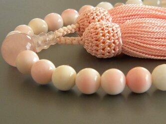 クイーンコンクシェルの念珠の画像