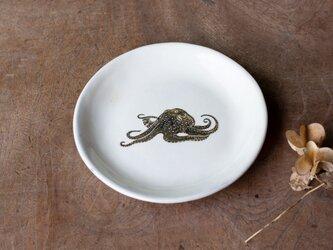 粉引丸皿(タコ)【クリックポスト198円可】の画像