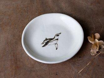 粉引丸皿(フンボルトペンギン)【クリックポスト198円可】の画像