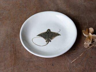 粉引丸皿(マダラトビエイ)【クリックポスト198円可】の画像
